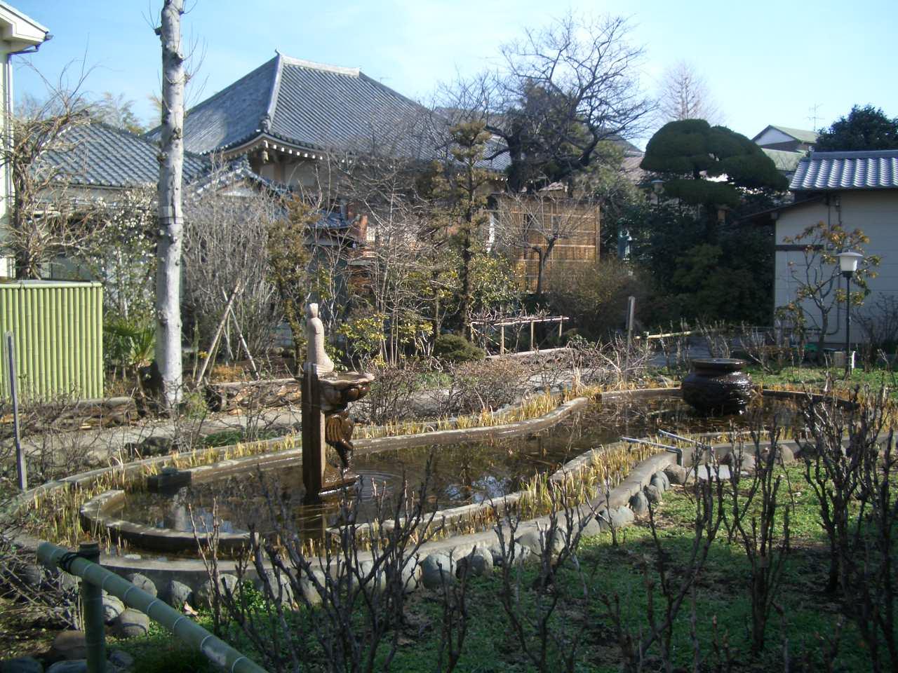 沼袋幼稚園 蓮池